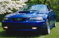 cars_mustang