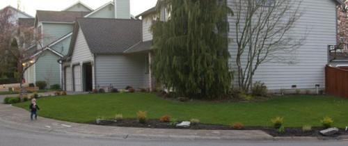 frontyardplants2