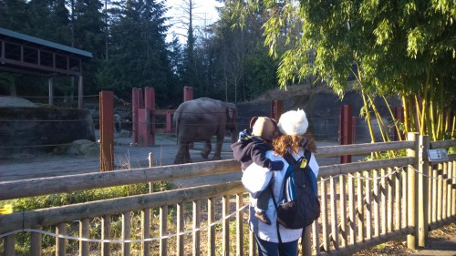 One of the first animals that Elijah learned to mimic was the elephant.