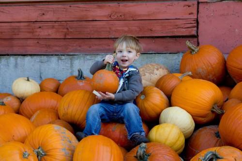 pumpkin2015_4